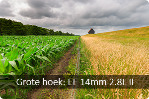 Review | EF 14mm 2.8L II