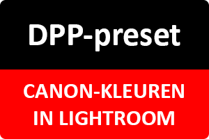 Workshop | DPP-preset in Lightroom