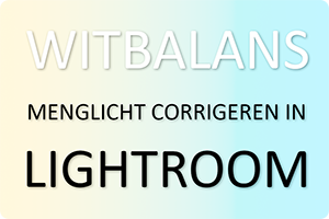 Workshop | Menglicht corrigeren in Lightroom