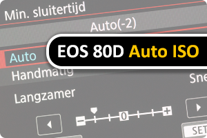 00_auto-iso.png
