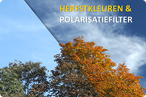 Workshop | Herfst en pola-filter