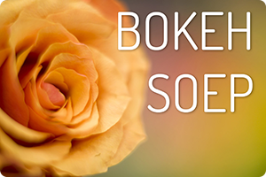 Workshop | Bokeh-soep
