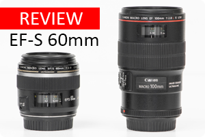 Review | EF-S 60mm f/2.8 Macro