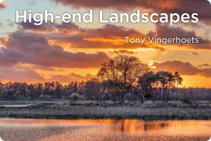 Tony | High-end Landscape (deel 2)