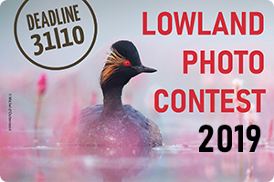 Lowland Photo Contest 2019