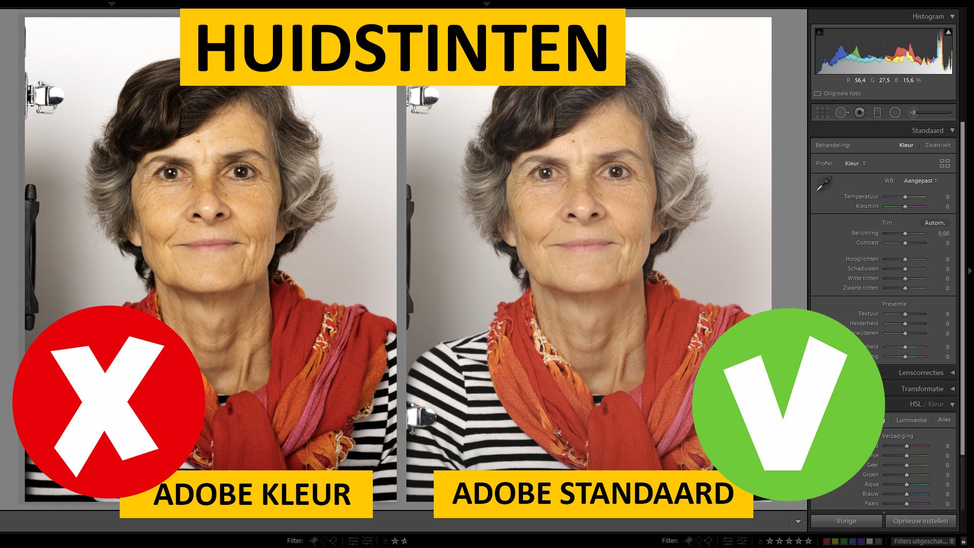huidstinten-visual