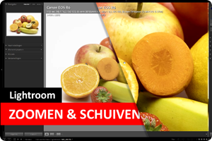 Lightroom | Zoomen en Schuiven