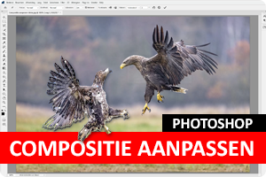 Photoshop | Compositie aanpassen