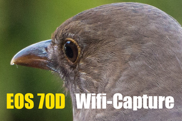 00_wifi-capture.jpg