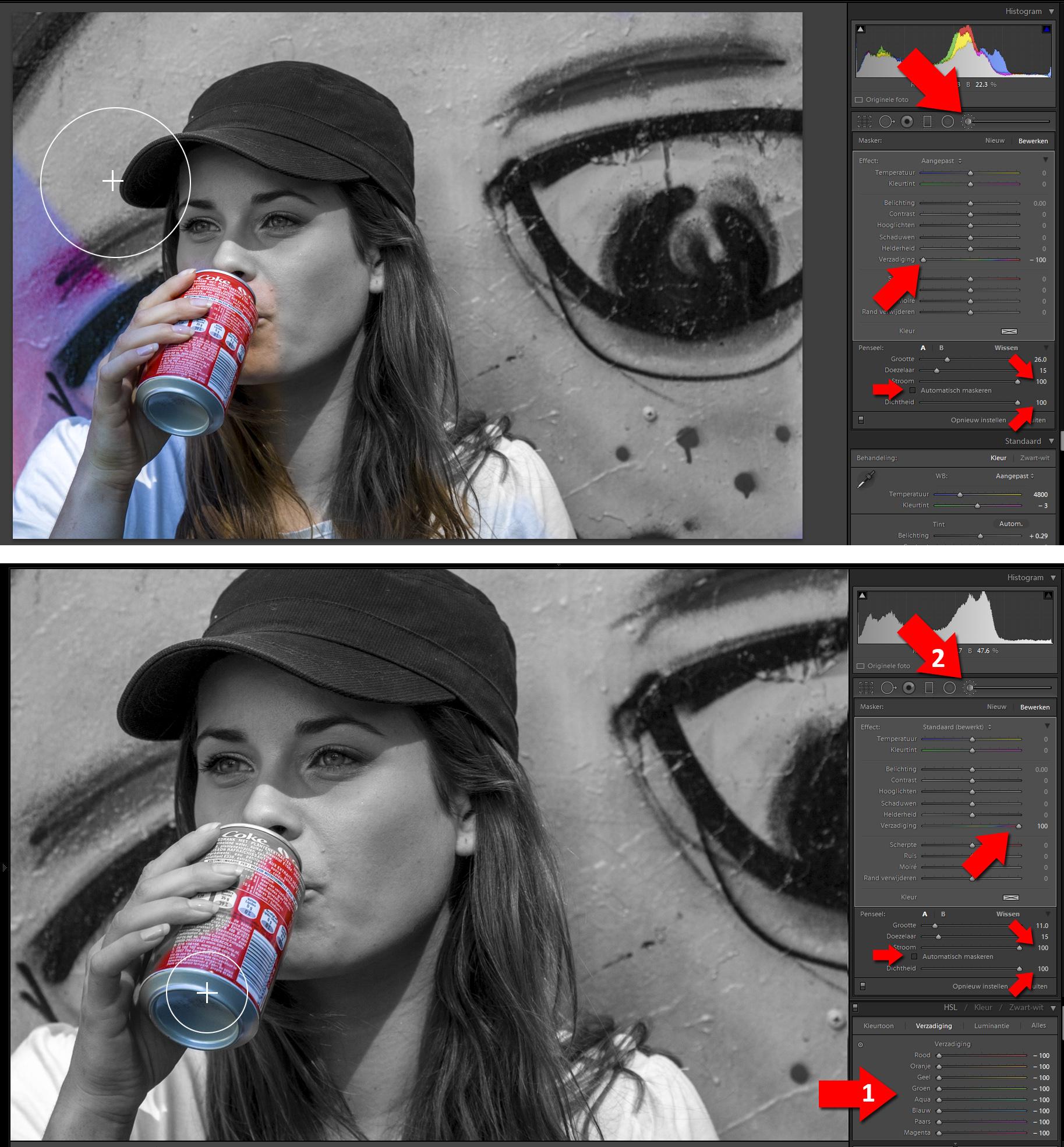 van zwart wit foto kleurenfoto maken